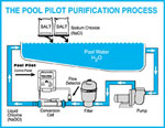 pool pilot purification process